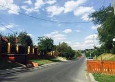 Teren de vanzare Balotesti-Privighetorilor